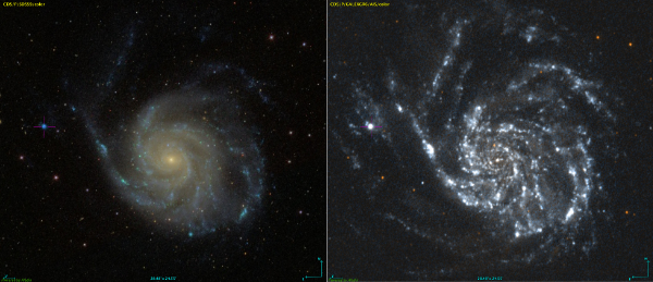 NGC 5471 in crosshairs near M101 - Image Courtesy Sloan Digital Sky Survey and GALEX