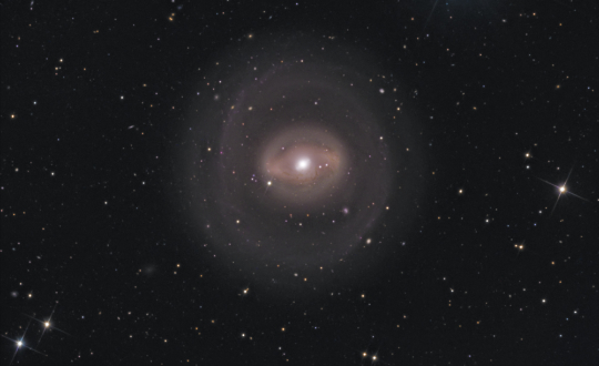NGC 1291: A bright ring galaxy in Eridanus - Image Courtesy of Steve Crouch