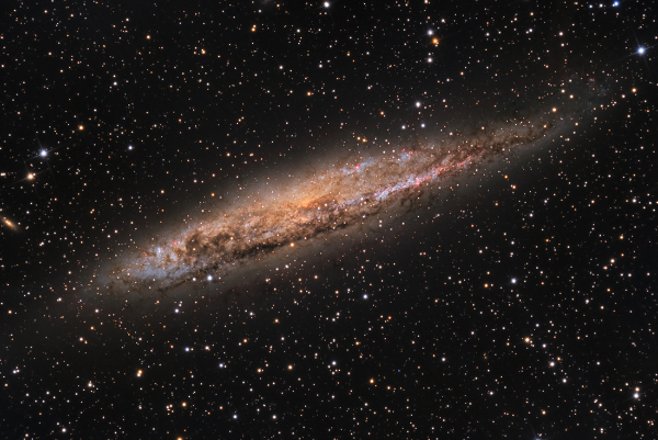 NGC 4945 in Centaurus - Image Courtesy of SSRO (Star Shadows Remote Obs.): Warren Keller, Steve Mazlin.
