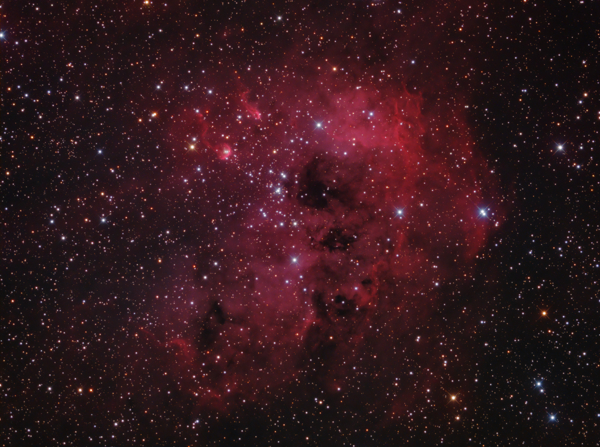 The Tadpole Nebula (IC410) in Auriga - Image Courtesy of David Davies
