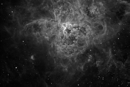 The Tarantula Nebula in Hydrogen Alpha - Image Courtesy of Steve Crouch
